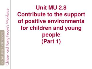 MU 2.8   Contribute to the support of positive environments for children and young people
