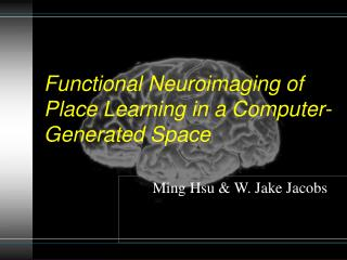 Functional Neuroimaging of Place Learning in a Computer-Generated Space
