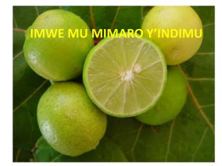 IMWE MU MIMARO Y'INDIMU BY, Emmanuel NZARAMBA
