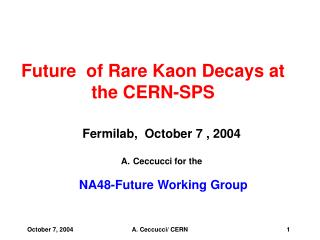 Future  of Rare Kaon Decays at the CERN-SPS