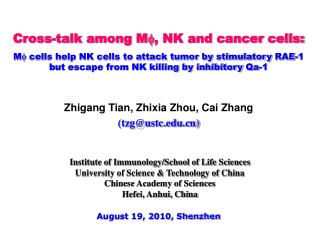 Cross-talk among M , NK and cancer cells: