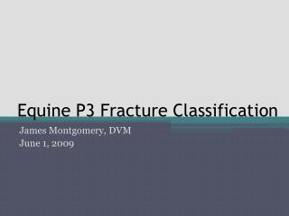 Equine P3 Fracture Classification