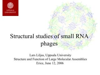 Structural studies of small RNA phages