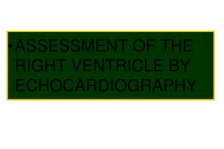 ASSESSMENT OF THE RIGHT VENTRICLE BY ECHOCARDIOGRAPHY