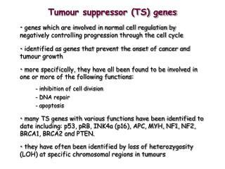 Tumour suppressor (TS) genes