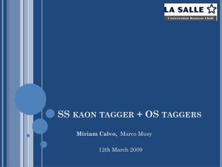 SS  kaon tagger  + OS  taggers
