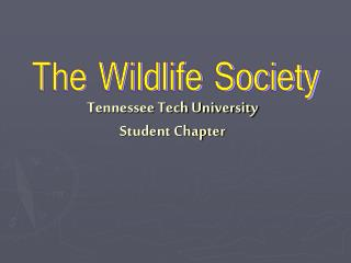 Tennessee Tech University Student Chapter