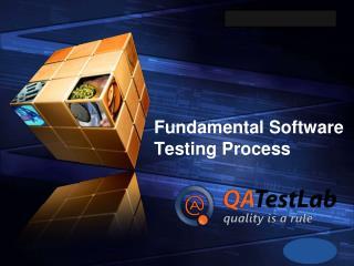 Fundamental Software Testing Process