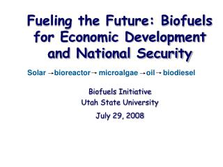 Fueling the Future: Biofuels for Economic Development and National Security Biofuels Initiative