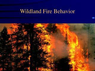 Wildland Fire Behavior
