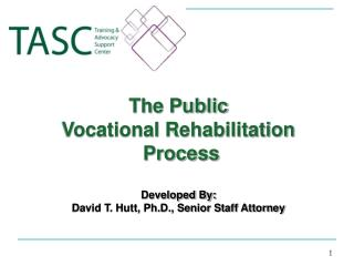 The Public  Vocational Rehabilitation  Process Developed By: