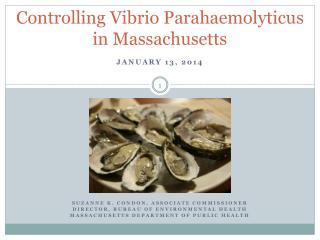 Controlling Vibrio Parahaemolyticus in Massachusetts