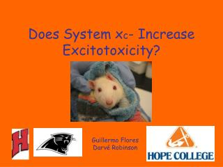 Does System x c - Increase Excitotoxicity?