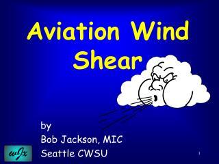 Aviation Wind Shear