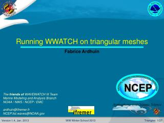 Running WWATCH on triangular meshes