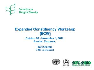 Expanded Constituency Workshop (ECW)
