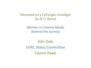 Siân  Gale EHRC Wales Committee Cwmni Pawb