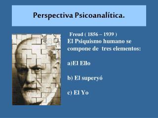 Perspectiva Psicoanalítica .