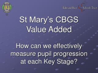St Mary's CBGS Value Added How can we effectively measure pupil progression at each Key Stage?