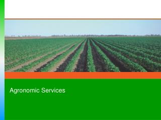 FiberMax & Stoneville-Agronomic Services & Variety Selector