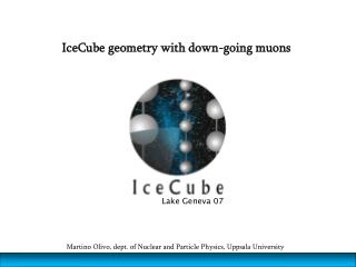 IceCube geometry with down-going muons