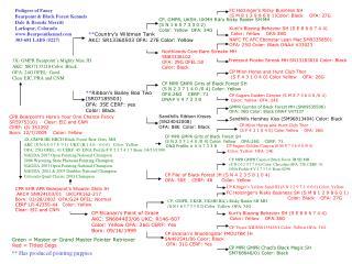 CPR SHR APR Bearpoint's Shootin Shilo JH  AKC# SN924103/01   UKC#R162-217