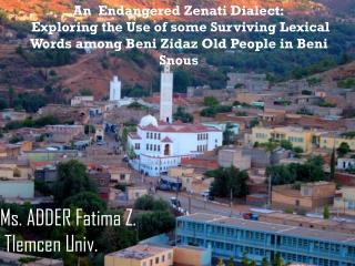 An   Endangered  Zenati  Dialect :