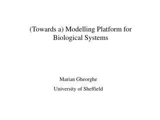 (Towards a) Modelling Platform for Biological Systems