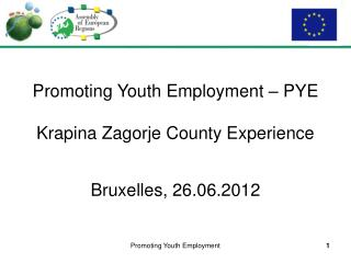 Promoting Youth Employment – PYE Krapina Zagorje County Experience Bruxelles, 26.06.2012