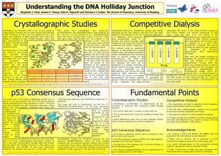 Understanding the DNA Holliday Junction