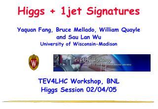 Higgs + 1jet Signatures
