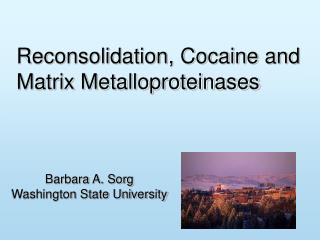 Reconsolidation, Cocaine and Matrix Metalloproteinases