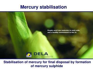 Mercury stabilisation