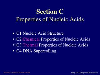 Section C Properties of Nucleic Acids