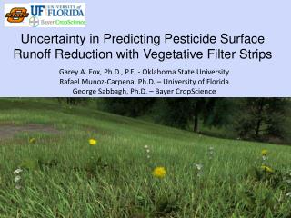 Uncertainty in Predicting Pesticide Surface Runoff Reduction with Vegetative Filter Strips