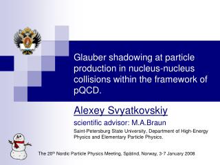 Alexey Svyatkovskiy scientific advisor: M.A.Braun