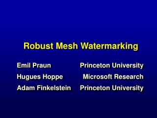 Robust Mesh Watermarking