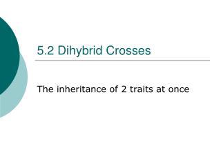 5.2 Dihybrid Crosses