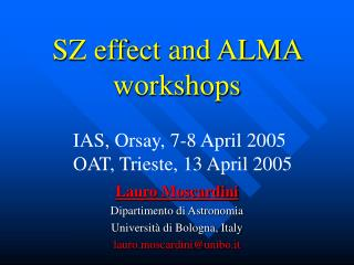 SZ effect and ALMA workshops