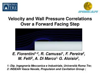 Velocity and Wall Pressure Correlations  Over a Forward Facing Step