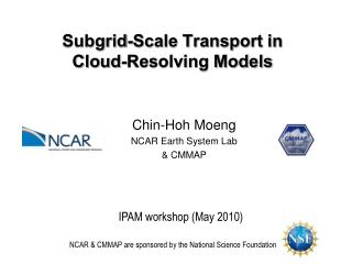 Subgrid-Scale Transport in  Cloud-Resolving Models
