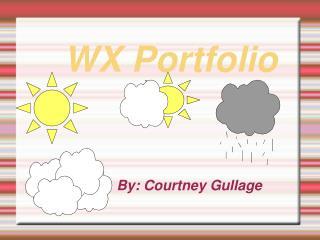 WX Portfolio