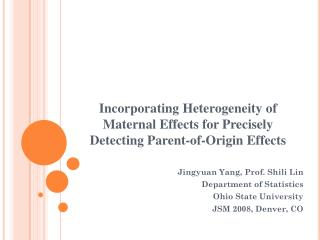 Incorporating Heterogeneity of Maternal Effects for Precisely Detecting Parent-of-Origin Effects
