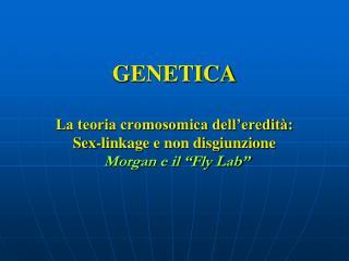 GENETICA La teoria cromosomica dell�eredit�: Sex-linkage e non disgiunzione Morgan e il �Fly Lab�