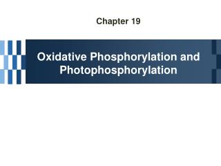 Chapter 19 Oxidative Phosphorylation and Photophosphorylation