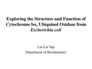 Exploring the Structure and Function of Cytochrome bo 3  Ubiquinol Oxidase from  Escherichia coli