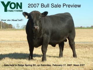 2007 Bull Sale Preview
