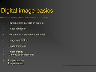 Digital image basics