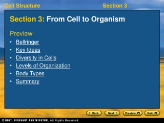 From Cell to Organism