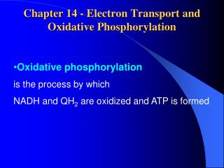 Chapter 14 - Electron Transport and Oxidative Phosphorylation